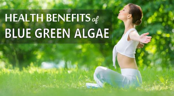 Health Benefits of BGA