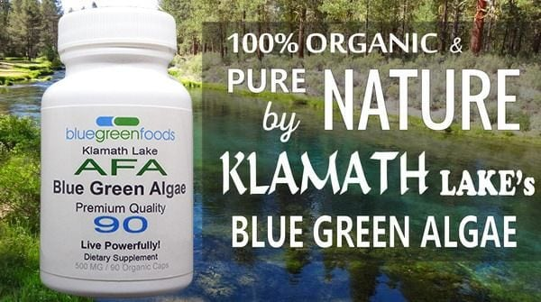 klamath lake organic blue green algae supplement home nature pure