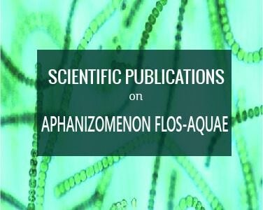 scientific publications aphanizomenon flos aquae bluegreenfoods klamath lake algae buy products online